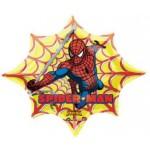 "Anagram 35""x29"" SpiderMan Web"