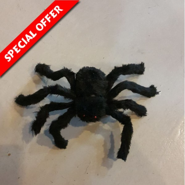 Black Spider for Deco - Small OEM-Others