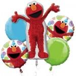 Sesame Street Elmo Style Birthday 5 pcs
