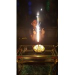 Firework Candle For Birthday Cakes OEM-Others
