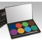 INtense Pro Pressed Powder Pigment (8 Color Palette)- Wind