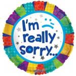Conver USA 18 Inch I am Really Sorry